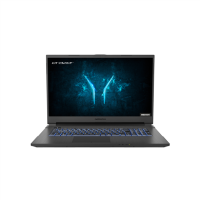 Medion Defender P10 Core i7-10750H 16GB 512GB SSD 17.3 Inch GeForce GTX 1660 Ti Windows 10 Gaming Laptop