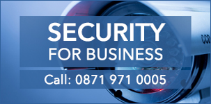 Security for Business